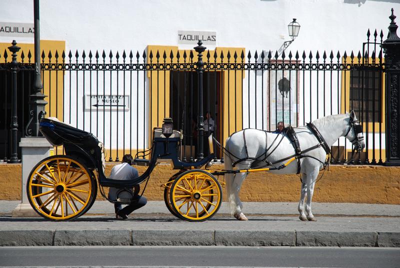 Arte Y Cultura Sevilla Motivos