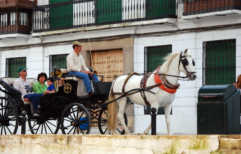 Carruaje en Ronda, Málaga.