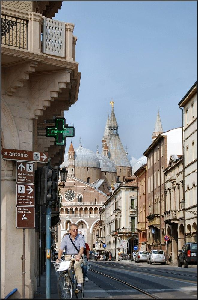 Cartolina di Padova