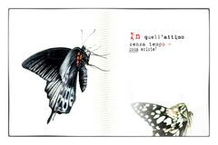Cartoline dai confini del tempo # 03