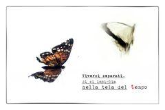 Cartoline dai confini del tempo # 07