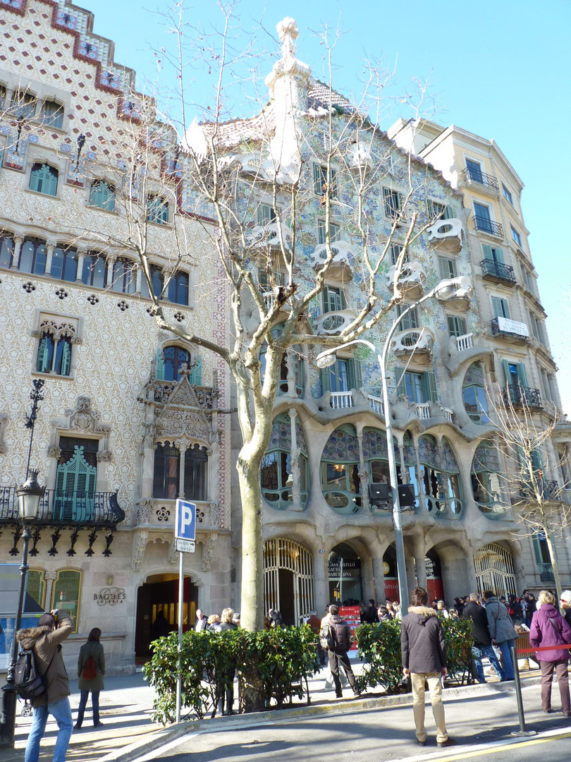 Casa Batllo de Antoni Gaudì. Barcelona. 28.2.10.