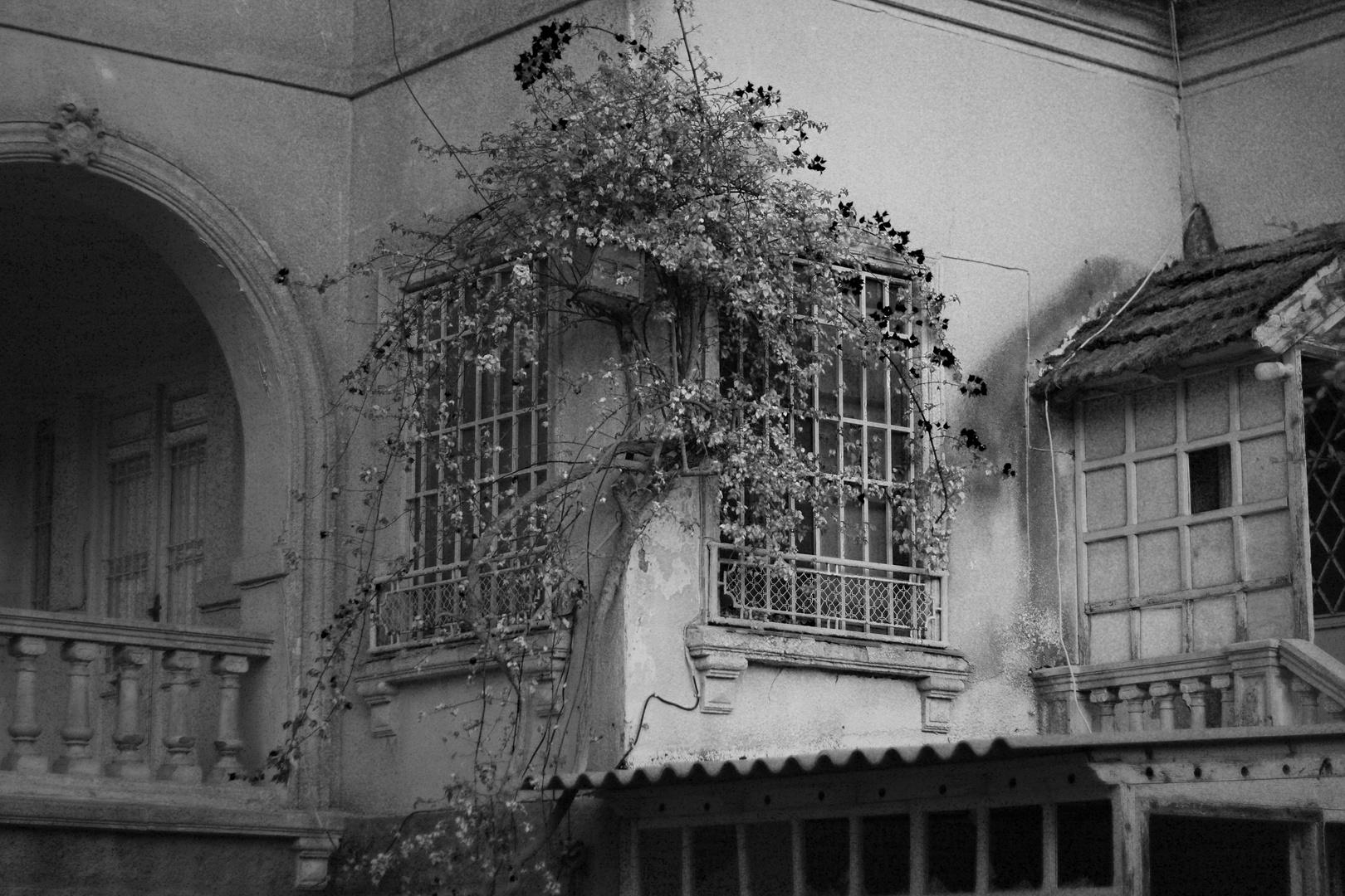Casa en La Alberca
