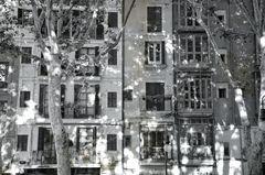 Casa's conjunto ( Blanca y negro)
