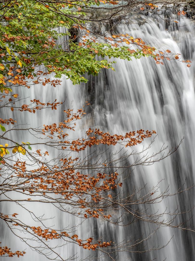 Cascada Otoñal