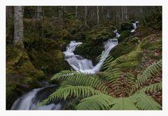 cascade de L'Esponne