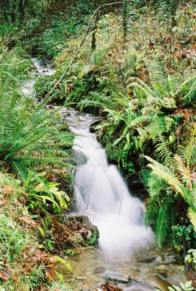 cascade des pyrennées