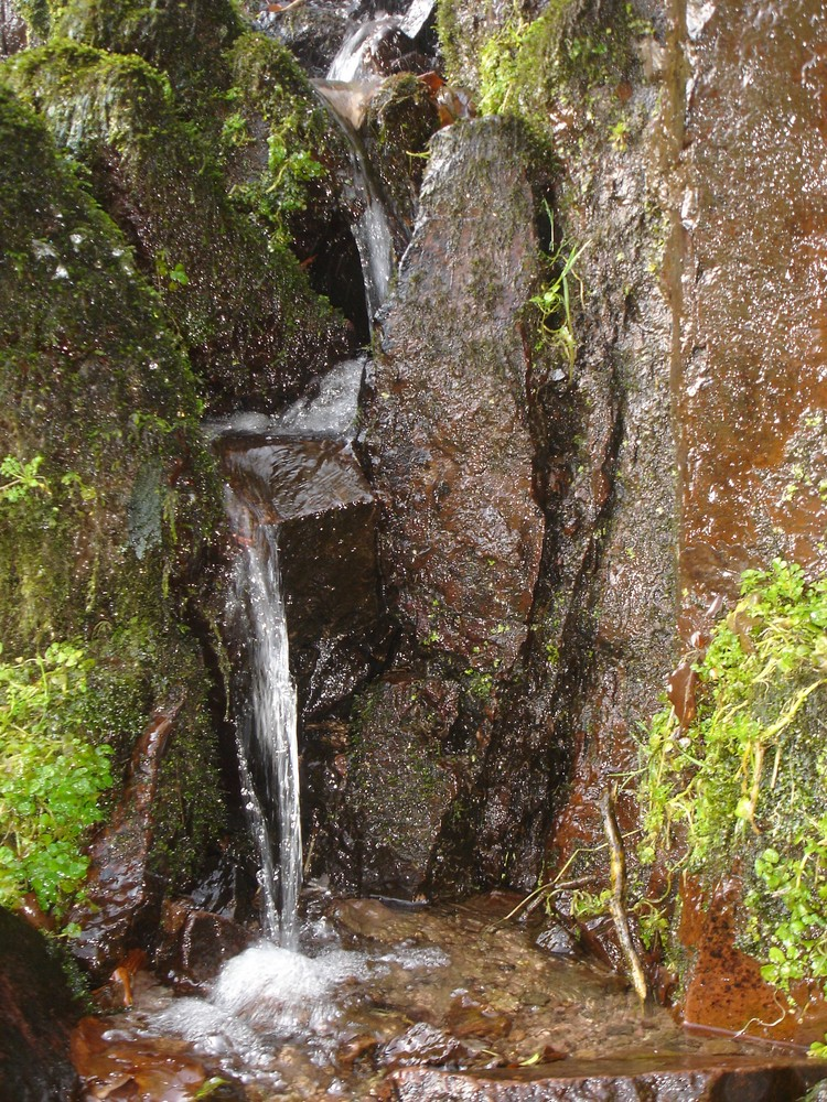 cascade du niedeck1