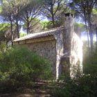 caseta del pinar El Saltillo VALVERDE delCAMINO (Huelva)