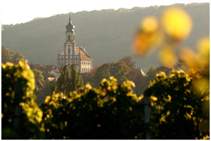 Castell im Herbst