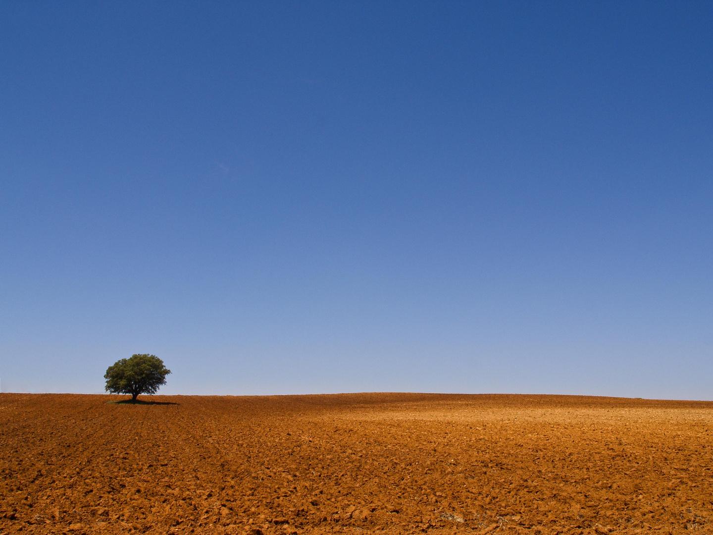 Castile–La Mancha, Spain