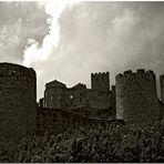 Castillo de Loarre I