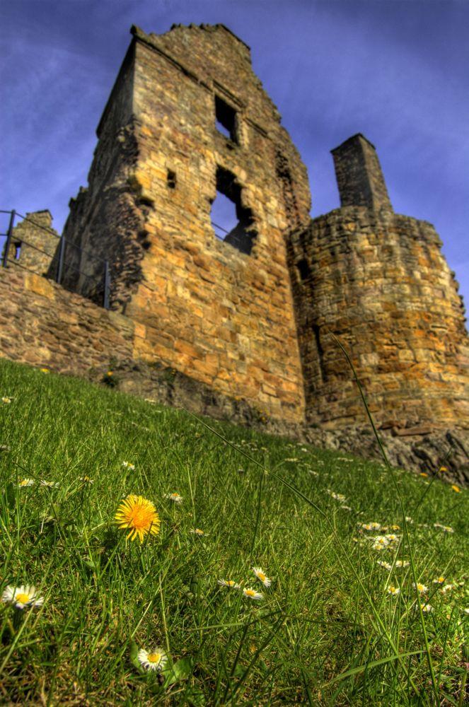 Castle I