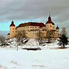 Castle of Läckö