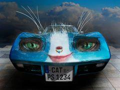 CAT PS 1234