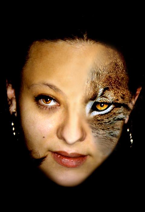 cat woman I