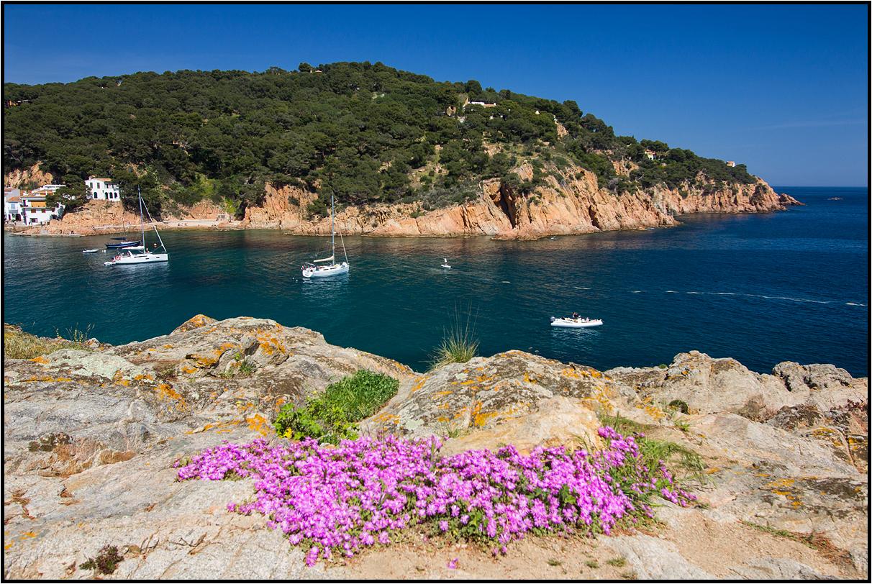 Catalonia | Bay of Tamariu |
