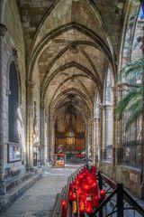 Catedral de Santa Eulalia IV - Barcelona