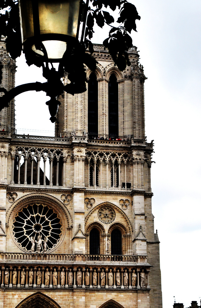 Cathédrale de Paris