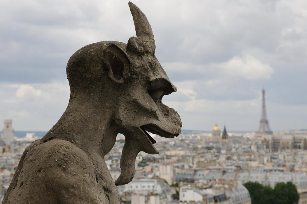 Cathédrale Notre Dame 3