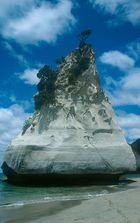 Cathetral cove rock