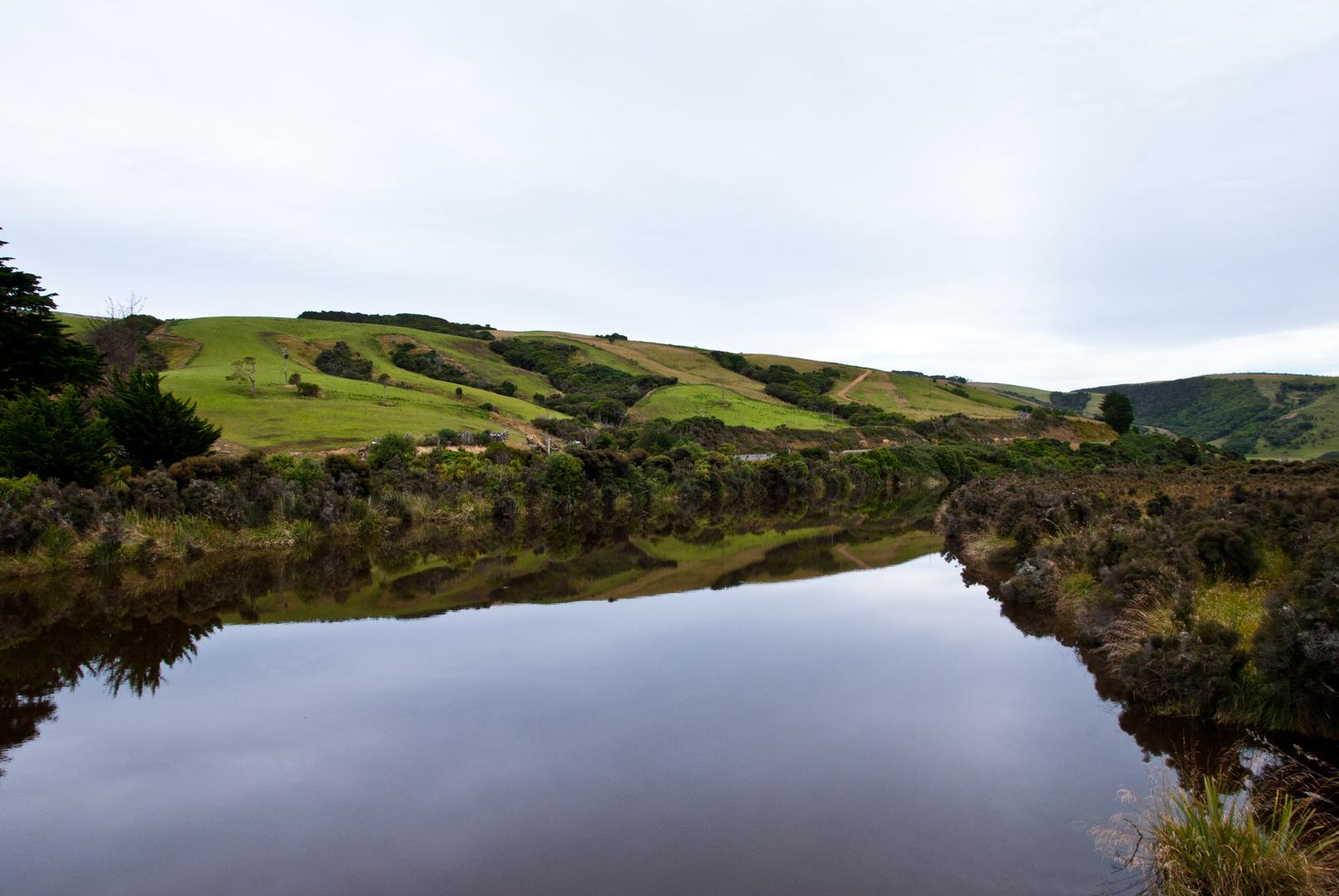 Catlins River