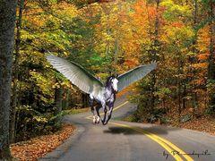 Cavallo alato