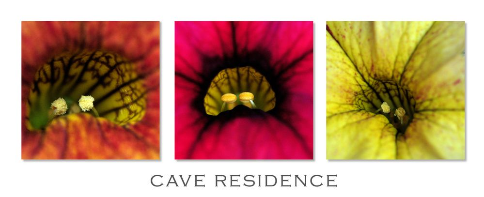 Cave Residence