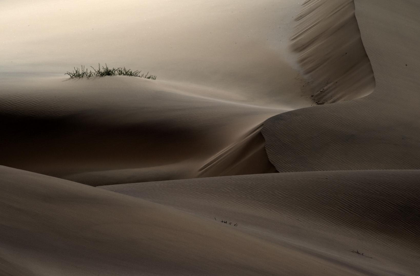 CBP_3726.  Sand