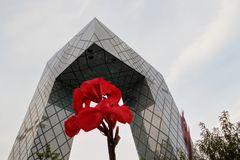 CCTV + flower  (or vice versa?)