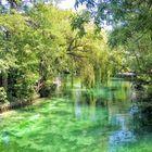 Ce vert qui nous manque tant