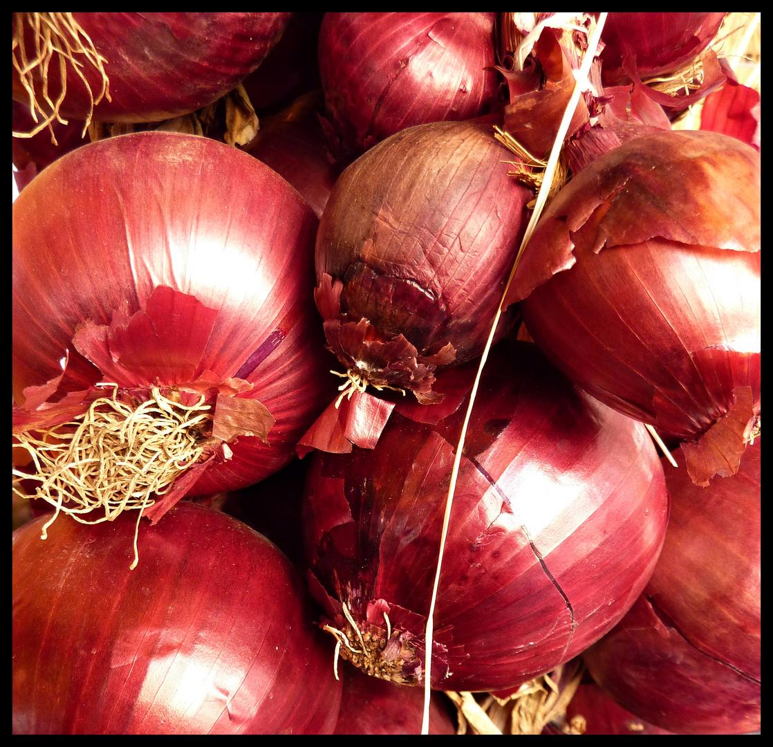 CEBOLLAS ROJAS ( del mercado de Campo di Fiori)