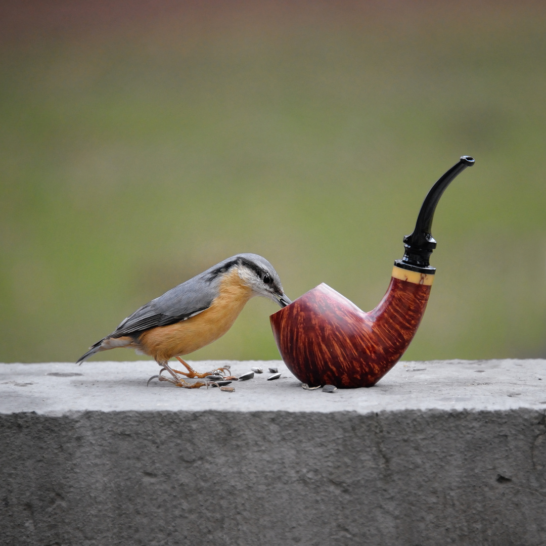 Ceci n'est pas une pipe ...