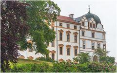Celler Schloss im Nieselregen