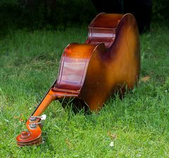 cello im gras