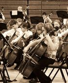 Cellos section