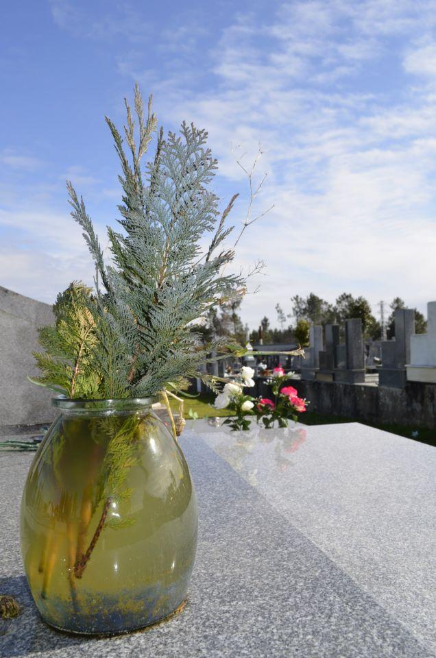 *cementerio