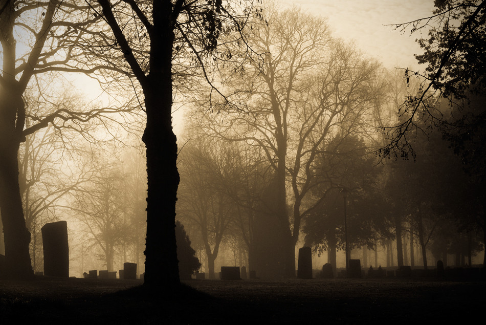 Cemetary in Fog