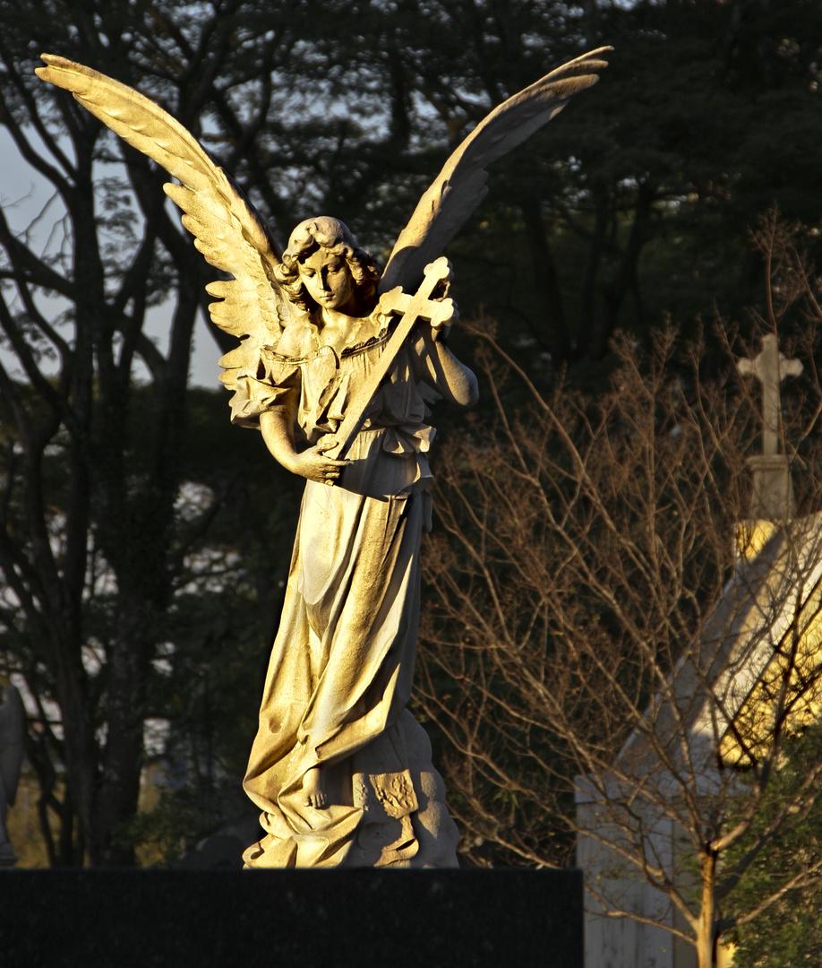 Cemitério da Consolação, São Paulo 2