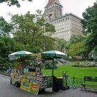 Central Park - 03