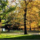 Central Park Autumn No.2