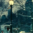 Central Park before Christmas