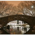 Central Park before Christmas1