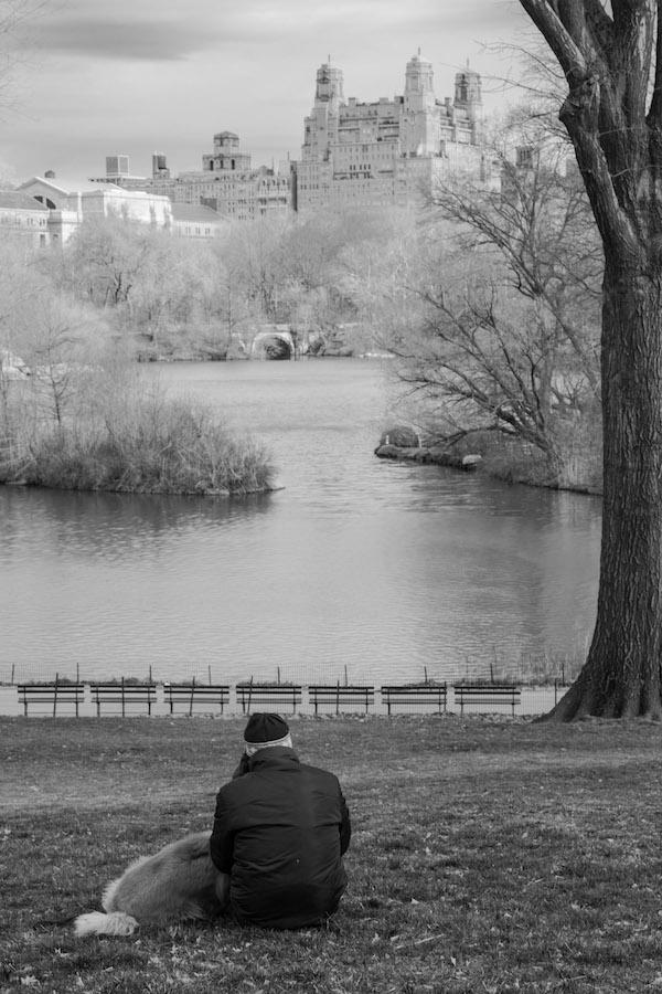 Central Park - friends