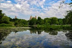 Central Park II