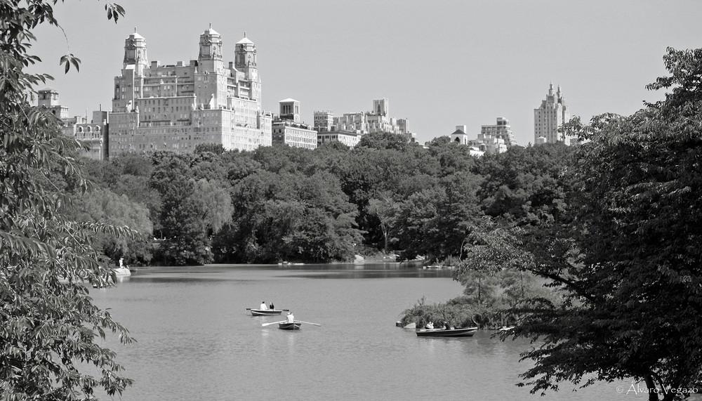 Central Park III