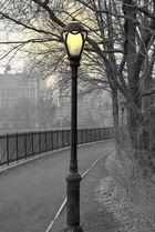 Central Park im März 2009