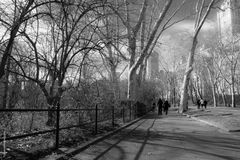 central park in BW