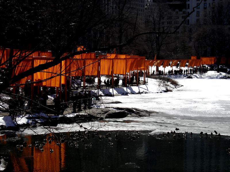 Central Park New York 2005