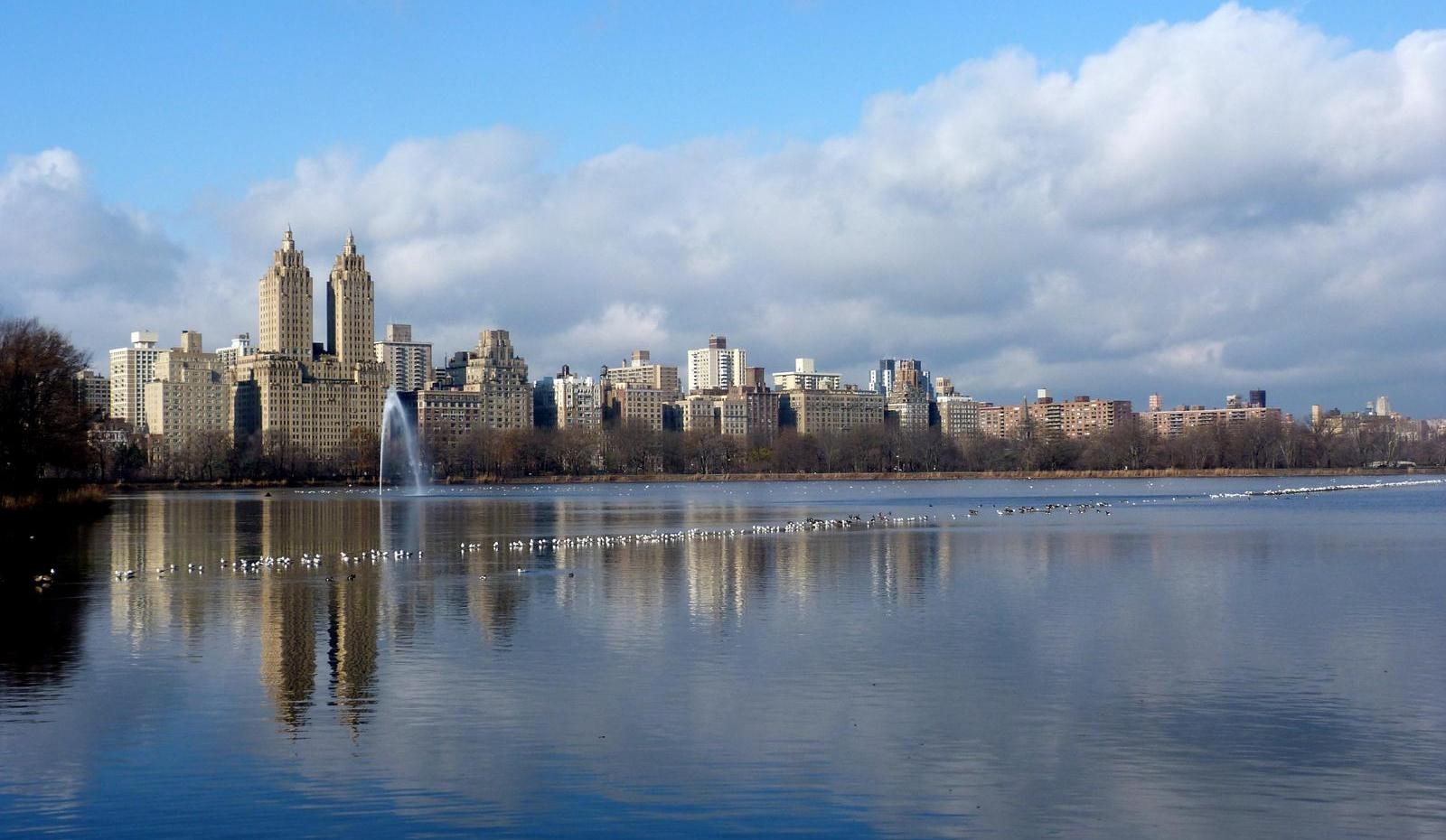 Central Park (New York).